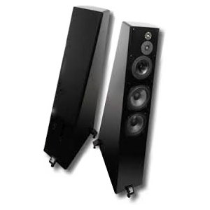 Reference 3A Grand Veena Speakers