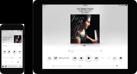 Technics C700 Premium Class Audio System
