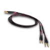 Audience OHNO III Speaker Cables